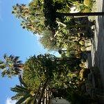 Photo de Park Hotel Terme Mediterraneo
