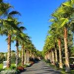 Photo de Regnum Carya Golf & Spa Resort