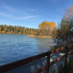 Great boardwalks running from the Soldotna Bridge to the city boat ramp.  (Nice campground too!)