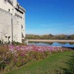 Château de Montsoreau-Musée d'art contemporain/ Wild garden hommage à Miriam Rothschild 2017
