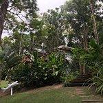 Foto de Trancoso Jungle Lodge