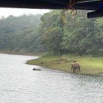 Foto de The Elephant Court
