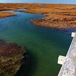 Bass Hole Boardwalk, November