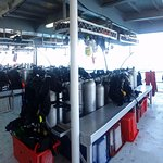 Φωτογραφία: Deep Sea Divers Den Day Trips