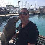 Foto de Oceanarium Explorer