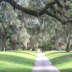 Brookgreen Gardens Foto
