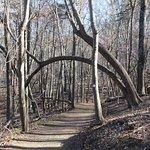 Foto de Pilot Mountain State Park