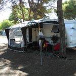 Foto de Camping El Garrofer