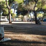 Photo de Camping El Garrofer
