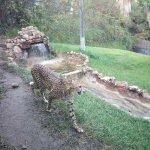 Парк Selwo Aventura