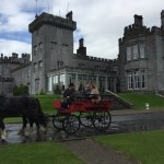 Horse & carriage at Dromoland Castle Hotel