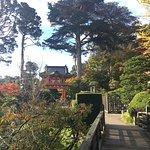 Photo de Japanese Tea Garden