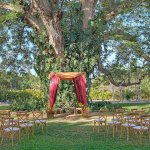 Outdoor Wedding - Indian Ceremony