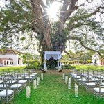 Outdoor Wedding - Jewish Ceremony
