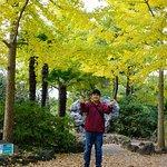 Foto de Hallim Park