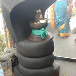 The Naga Linga below the Stal Viruksha