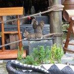 Formosan Aboriginal Culture Village Freizeitpark Foto