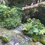 Foto de Hacienda Selva Maya