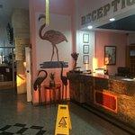Photo of Flamingo Beach Hotel