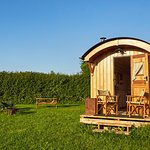Shepherd's Huts at Walnut Tree Farm