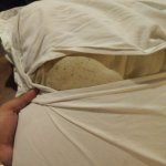 Dirty Pillow with signs of ancient bedbugs