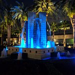Night time water display