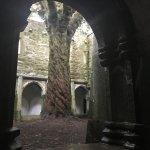 Cloister at Muckross Abbey