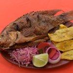 El pescado tilapia roja es el plato especial de la casa