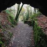 One of the paths leads through a short tunnel