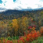 Beautiful fall foliage on the Foothills Parkway