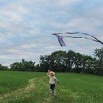 Field - Kite Flying
