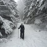 Ridge Road Snowshoeing