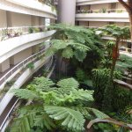 view inside Hilton Cairns