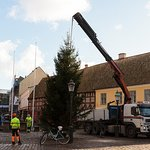 Putting up the Christmas tree