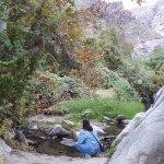 Photo of Tahquitz Canyon