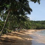 Photo of Bom Bom Principe Island