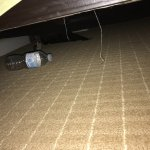 Found empty water bottle under bed. Housekeepers do clean under the bed—NOT!