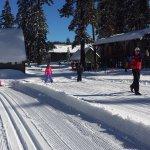 Winter XC Ski Instruction & Kids' Club