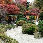 Japanese Garden Nov 12 2017