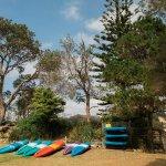 Bay of Plenty Lodges - kayaks