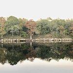 Foto di Suwannee River Rendezvous Resort & Campground