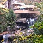 Fallingwater Image