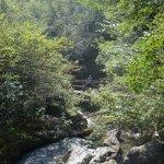 White River Byala Reka