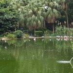 Foto de Parque Kowloon