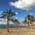 Photo de Playa de Palma, El Arenal