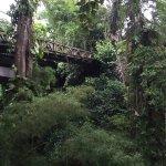 Photo of bridges Bali