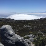 Views and que's on Table Mountain National Park