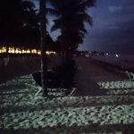 Foto de Hotel Riu Lupita