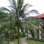 Foto Sutera Harbour Resort (The Pacific Sutera & The Magellan Sutera)