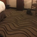 Wavy, rolling carpet